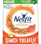 Nestle Nesfit Meyveli Poşet 400 Gr