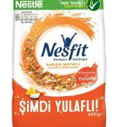 Nestle Nesfit Karışık Meyveli Gevrek 400 g