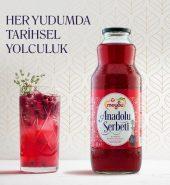 MEYSU ANADOLU ŞERBETİ 1 L